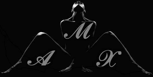 logo MaxHotel